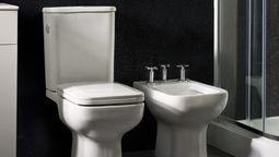 altText(Vanitorys, zona de lavamanos y sanitarios en altura: los nuevos workshops de Ferrum para esta semana)}